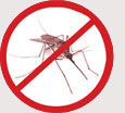 Pest Control Colchester - Mosquettos & Flys